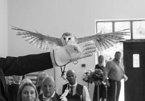 Owl ring bearer