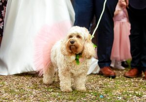 Church wedding Alvanley